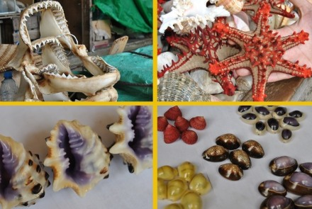Some of the souvenirs we saw at the market.  I've never seen shells like these before.  They were so colorful and beautiful!